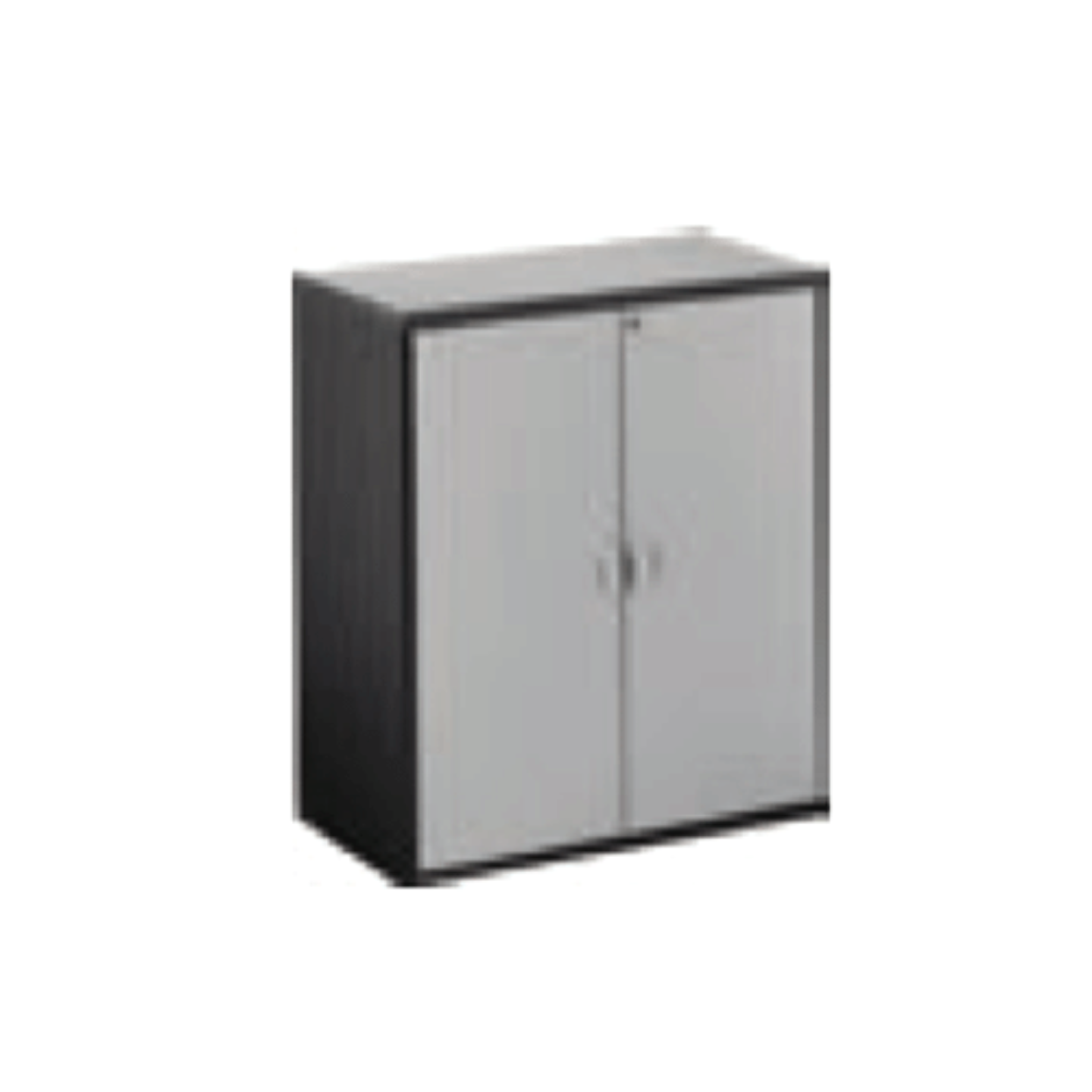 Grey Swing Door Cabinet