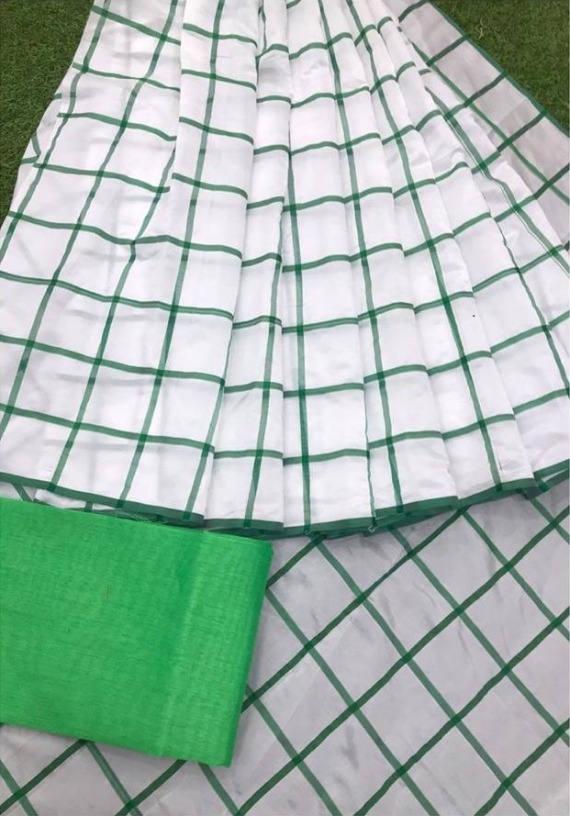Delicate Green borderPanetar Checks Regular Saree