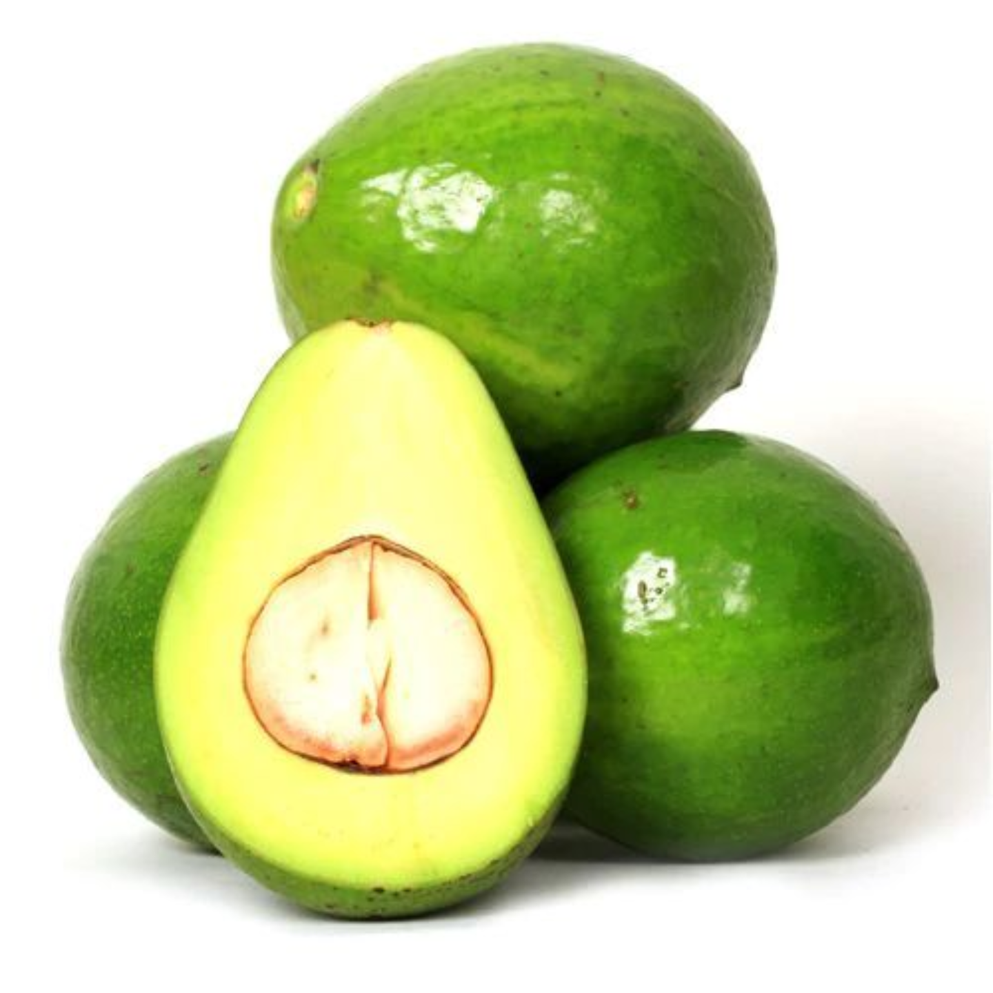 AVOCADO - Butter Fruit - Organically Grown - 1 Kg