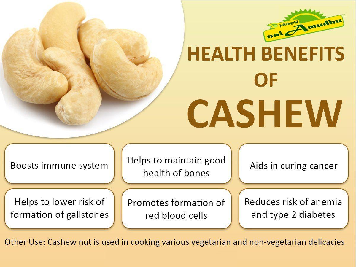 nalAmudhu Premium Grade Whole Bold Cashews   Kaju   Mundiri