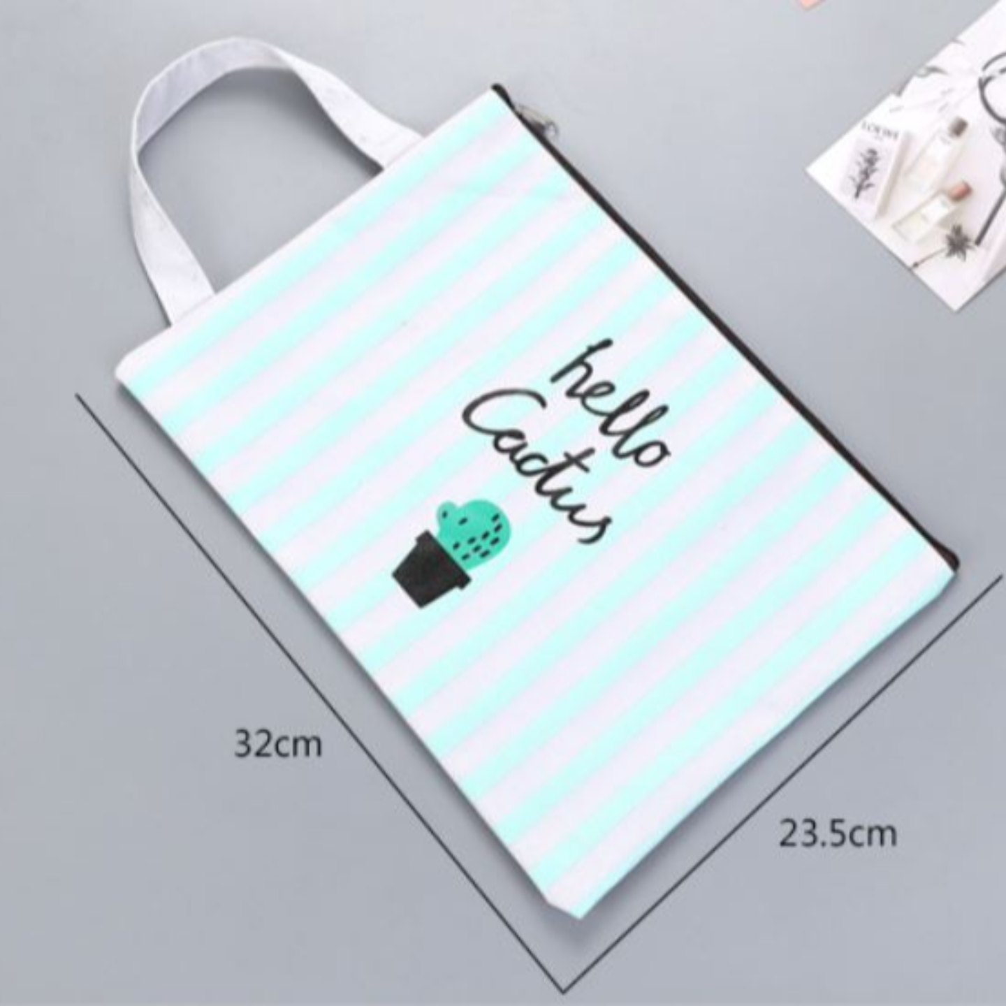 Cactus Document Bag with Packaging and Sticker