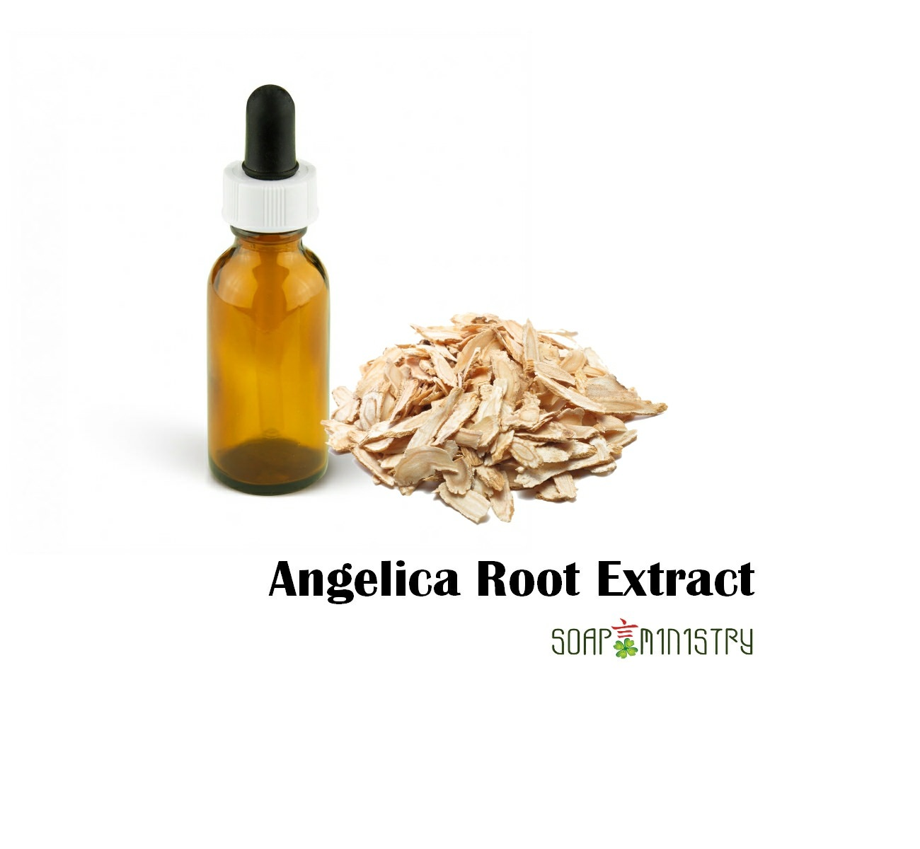 Angelica Root Extract 15g