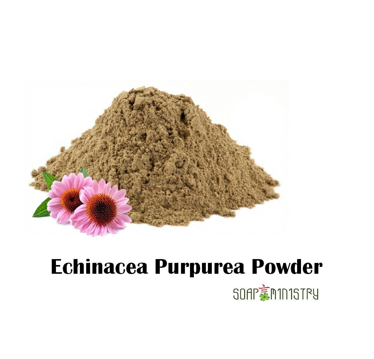 Echinacea Purpurea Powder