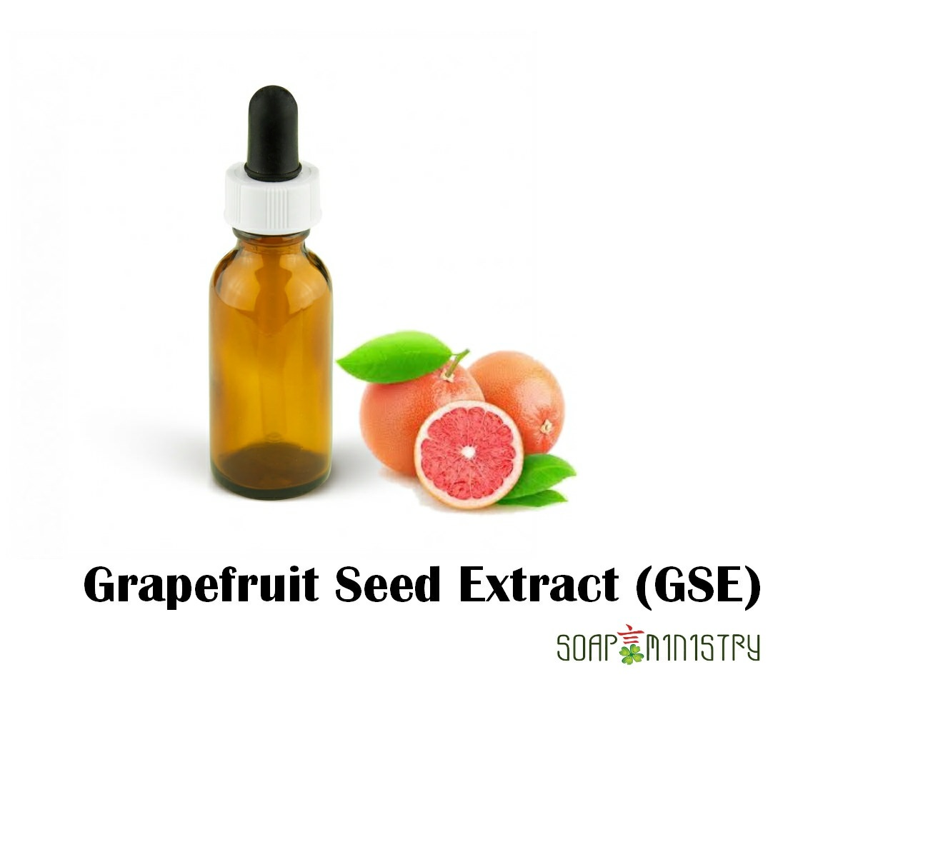 Grapefruit Seed Extract (GSE) 100g
