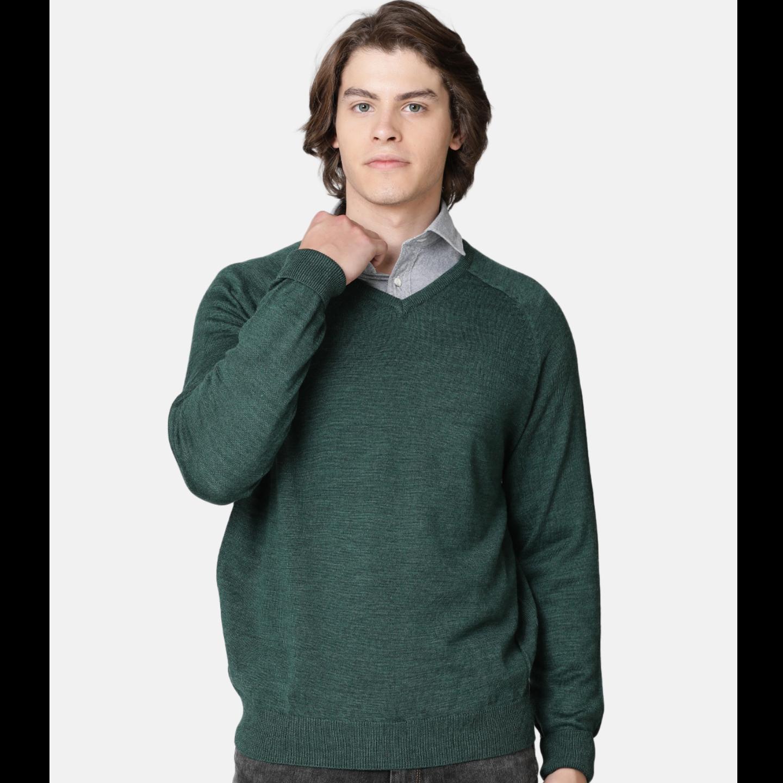 Bar Harbour Men Ever Green Color V Neck Sweater