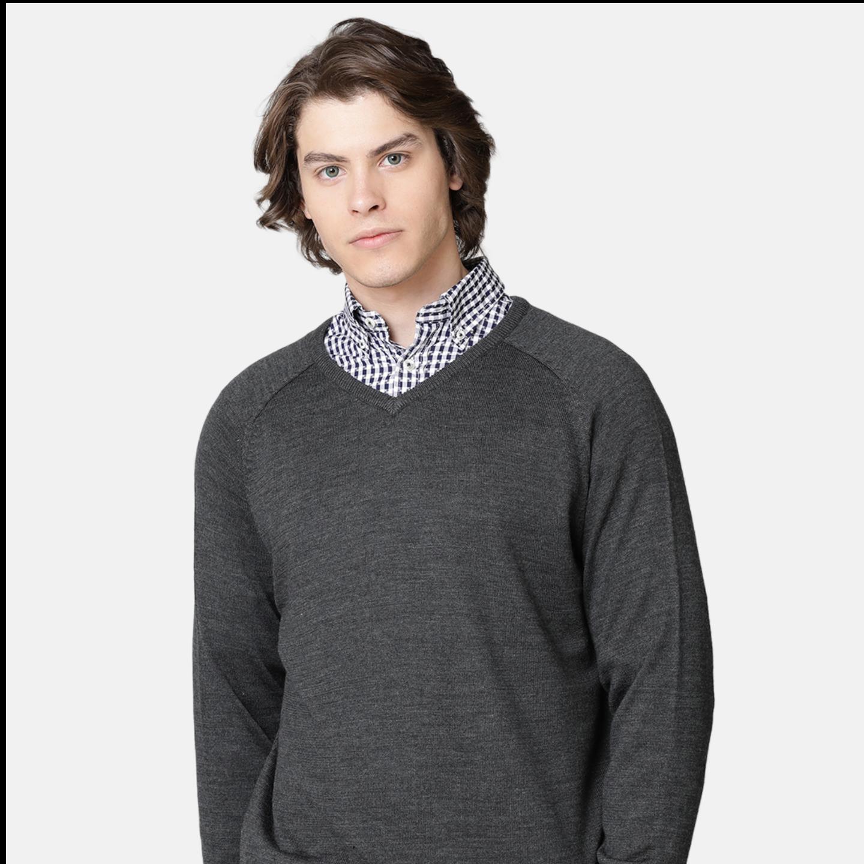 Bar Harbour Men Grey Color V Neck Sweater