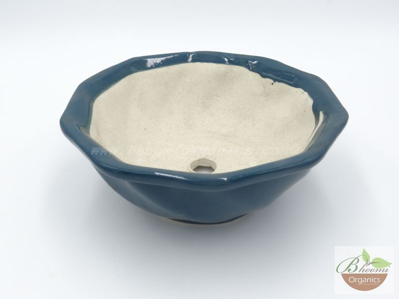 Bowl octagon blue