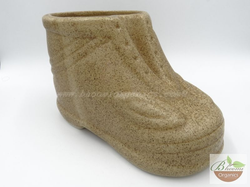 Shoe big sandy stone