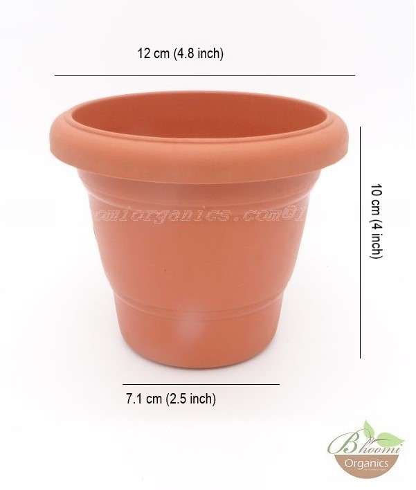 Regular Terracotta plastic pot (4 inch)