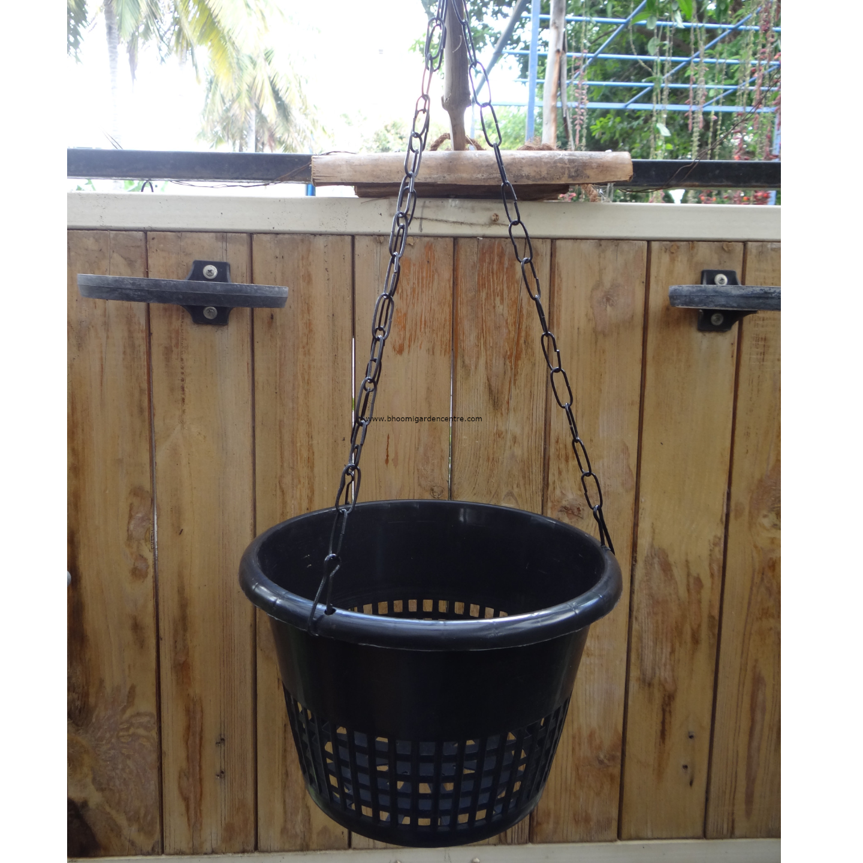 Black Orchid pot - 8 inch