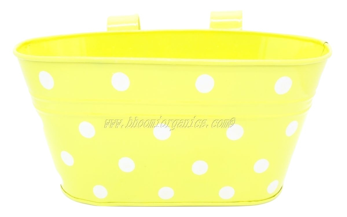 Yellow oval with polka dots