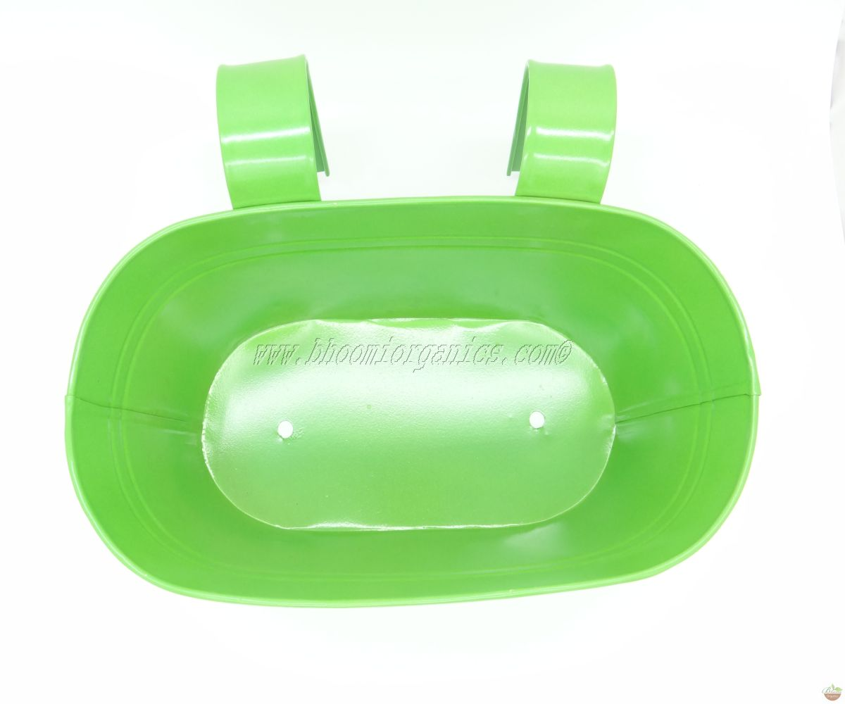Green oval with polka dots (13 inch)