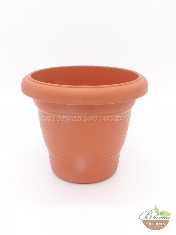 Regular Terracotta plastic pot (8 inch)