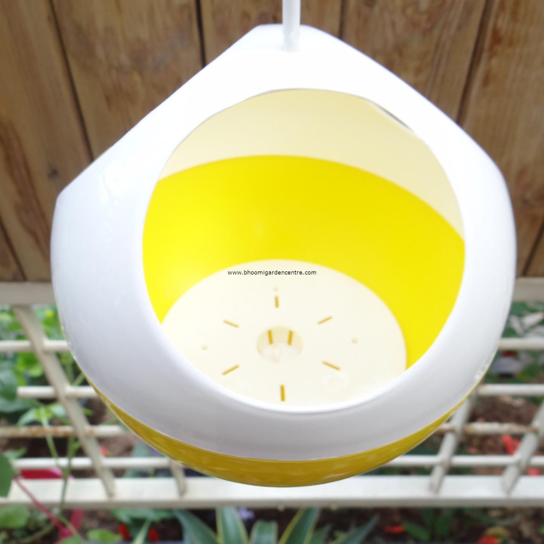 Avant yellow ORB hanging pot
