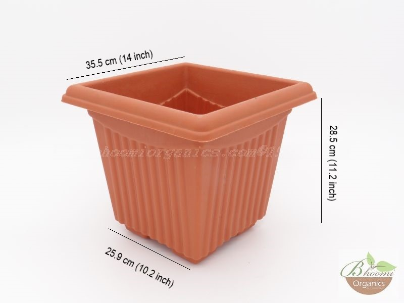 Square Terracotta Plastic pot (14 inch)