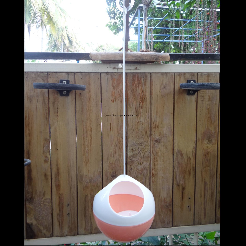 Avant peach ORB hanging pot