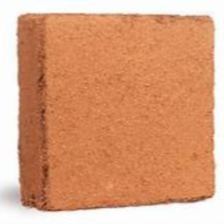 Cocopeat          5kg block