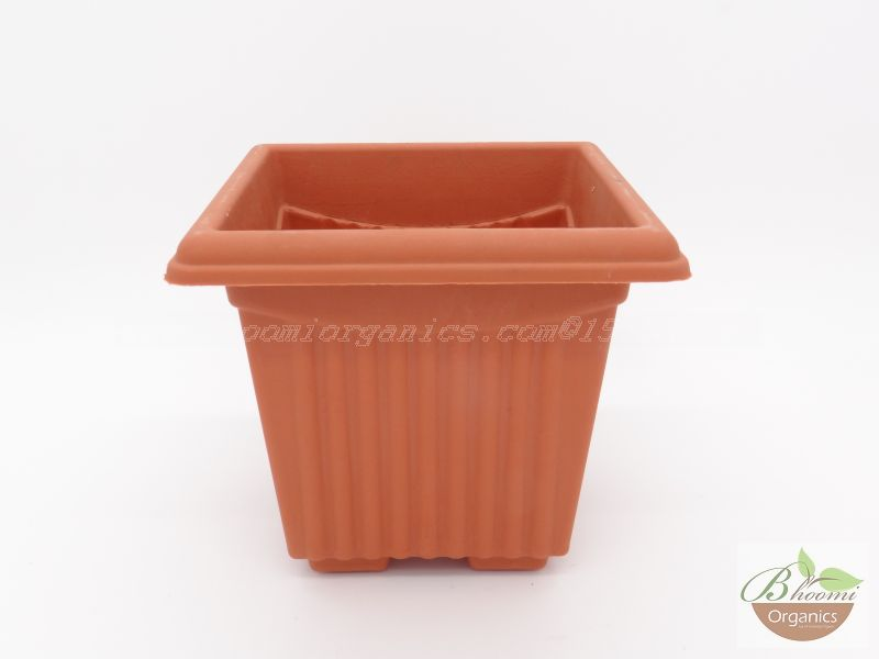 Square Terracotta Plastic pot (10 inch)