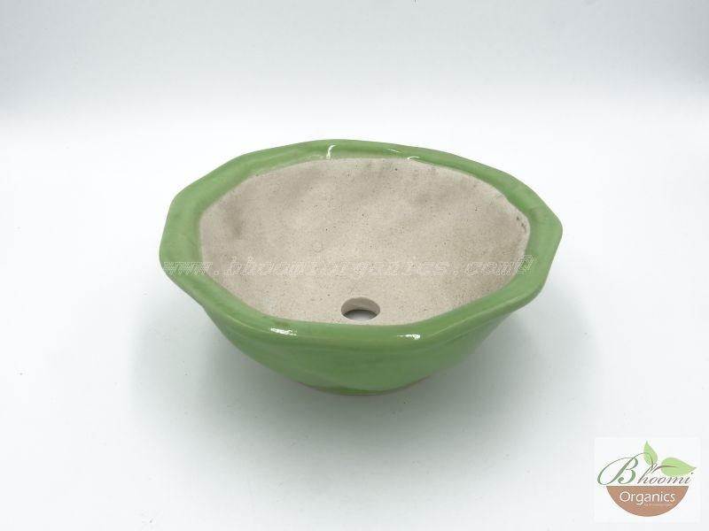 Bowl octagon green