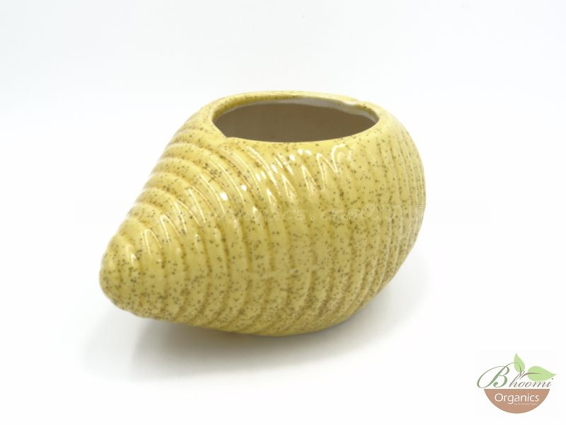 Shankh pot yellow