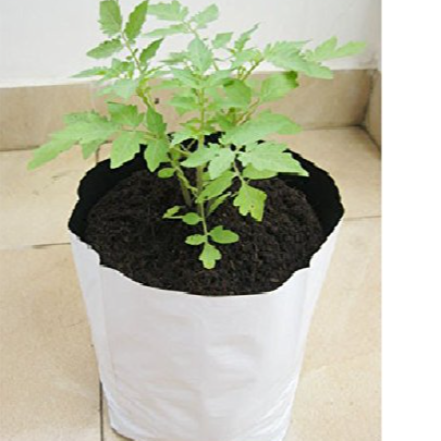 Growbags 28 x 28 x 60cm (set of 10)
