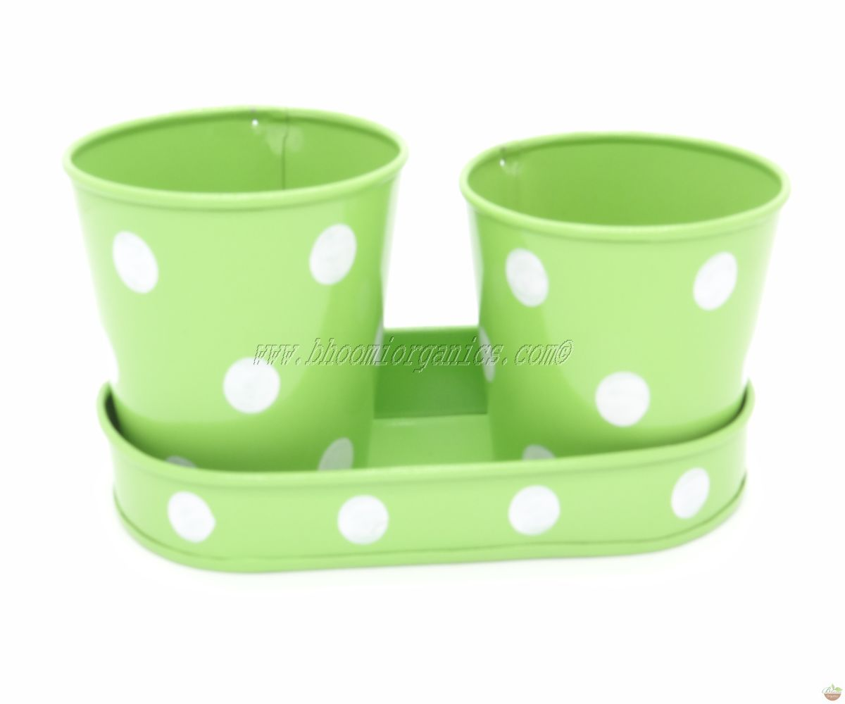 Small 2 cup with plate green