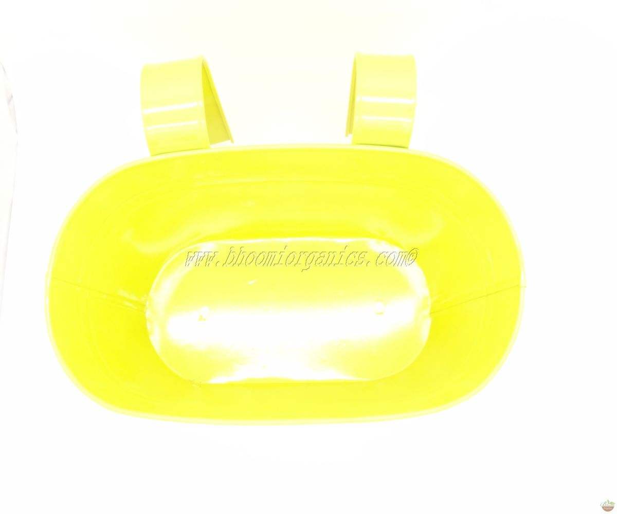Yellow oval plain