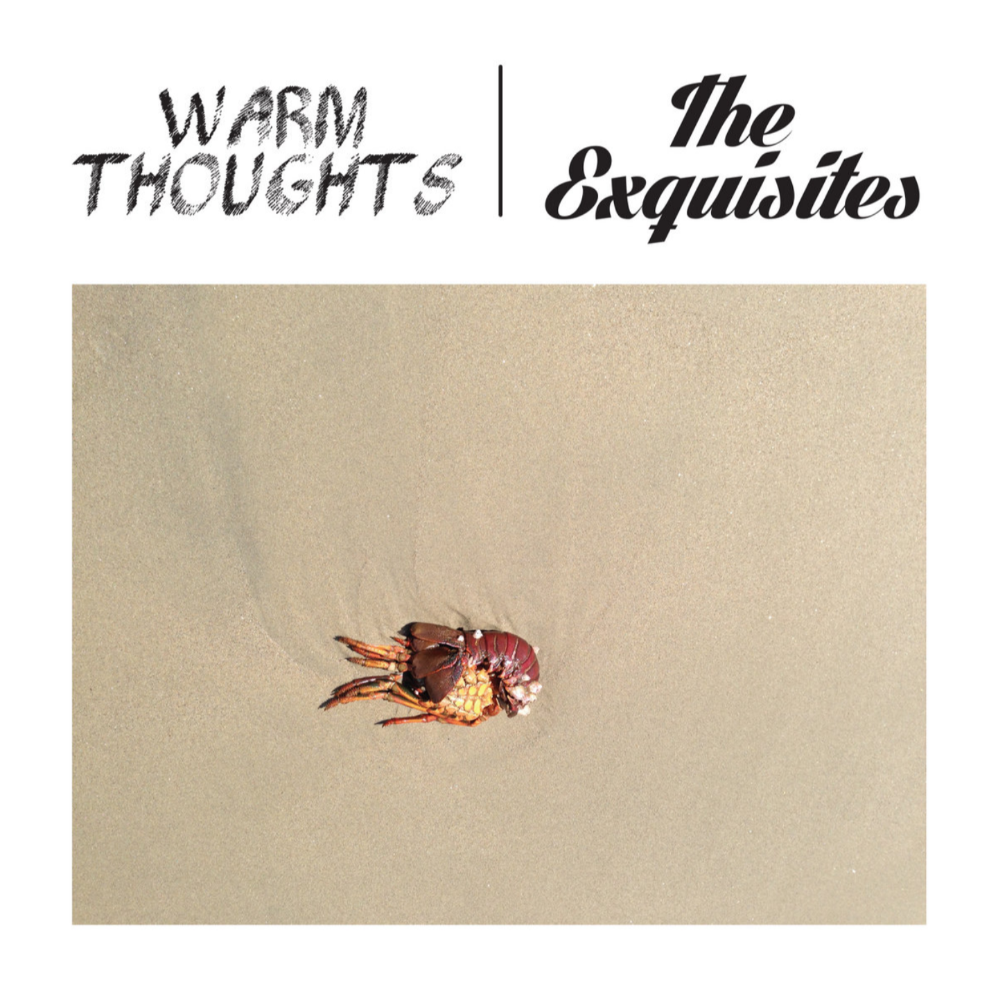 WARM THOUGHTS  EXQUISITES, THE - Split 7