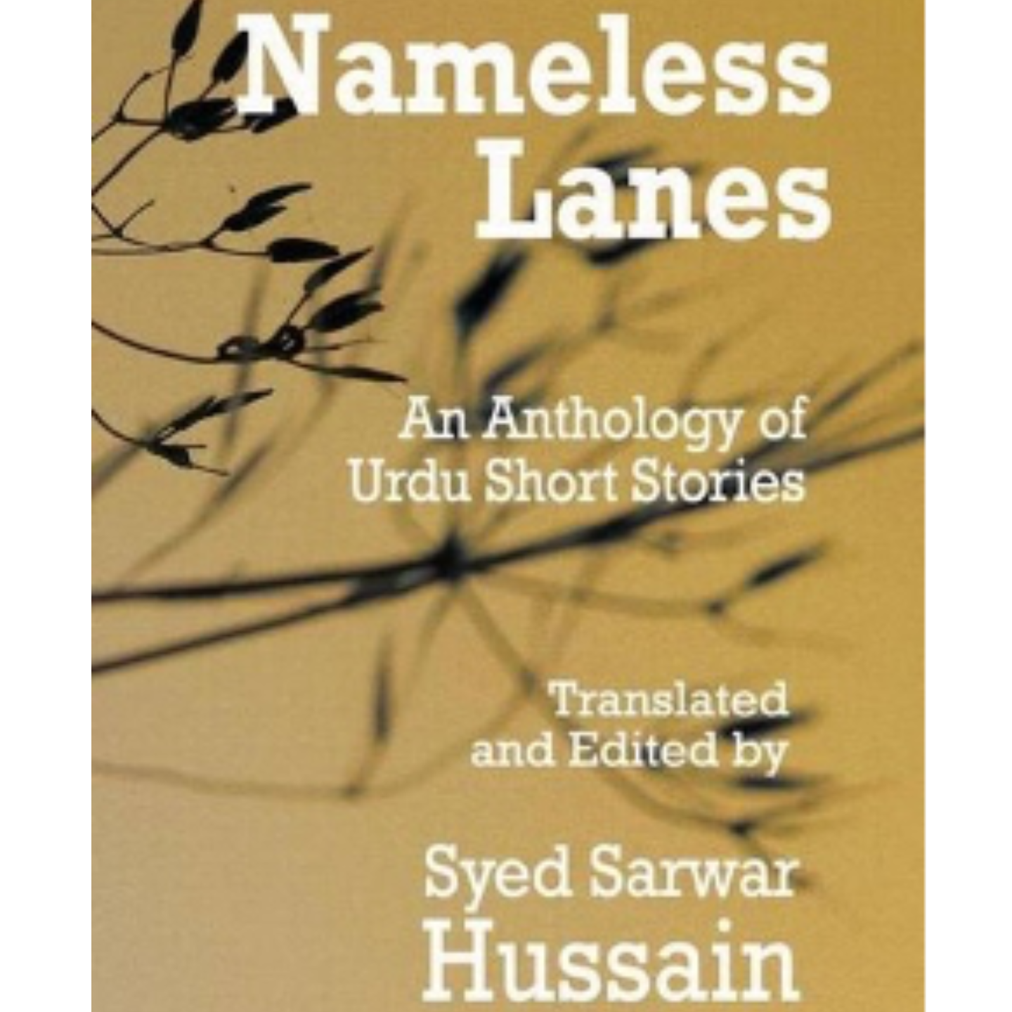 Nameless Lanes by Syed Sarwar Hussain