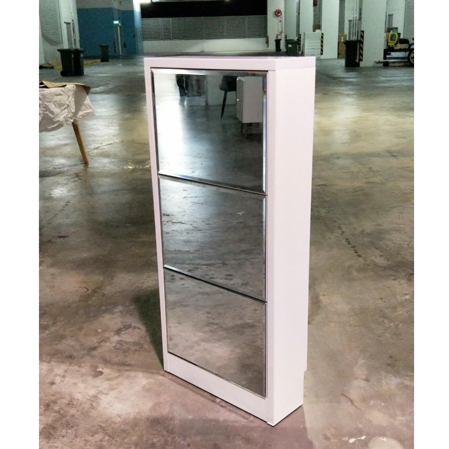 LEICESTER Ultra Slim Mirror Shoe Cabinet