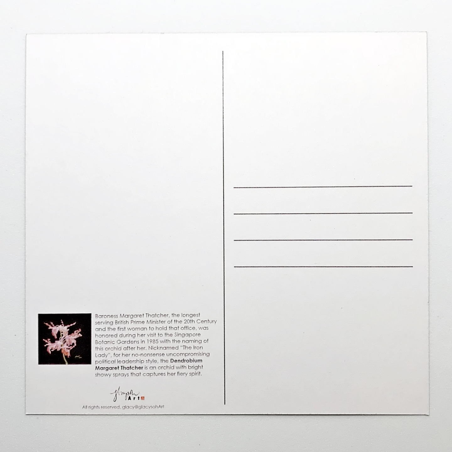 Sketches Of Singapore Series Orchid Postcard - Dendrobium Margaret Thatcher by Glacy Soh