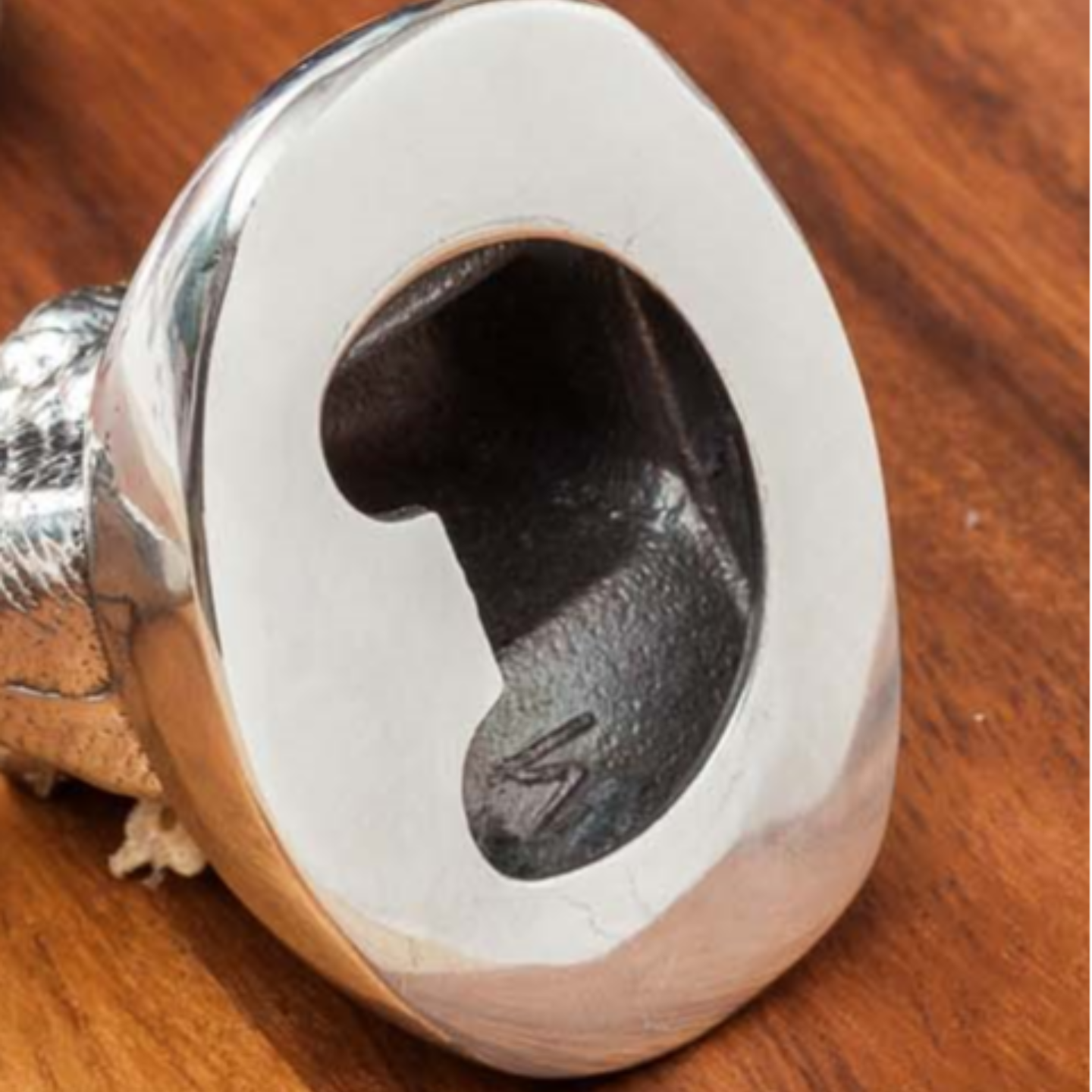 Elephant Head - Bottle Opener
