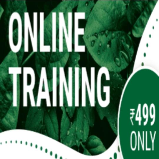 Hydroponic Training