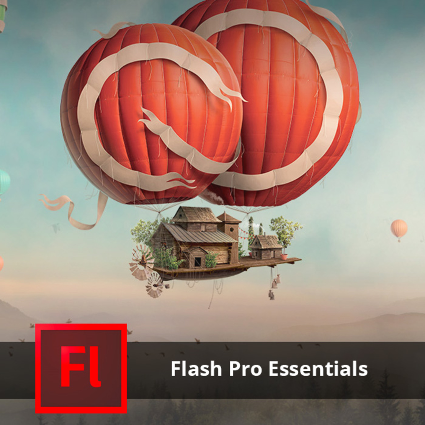 Adobe Training - Flash Professional Essentials