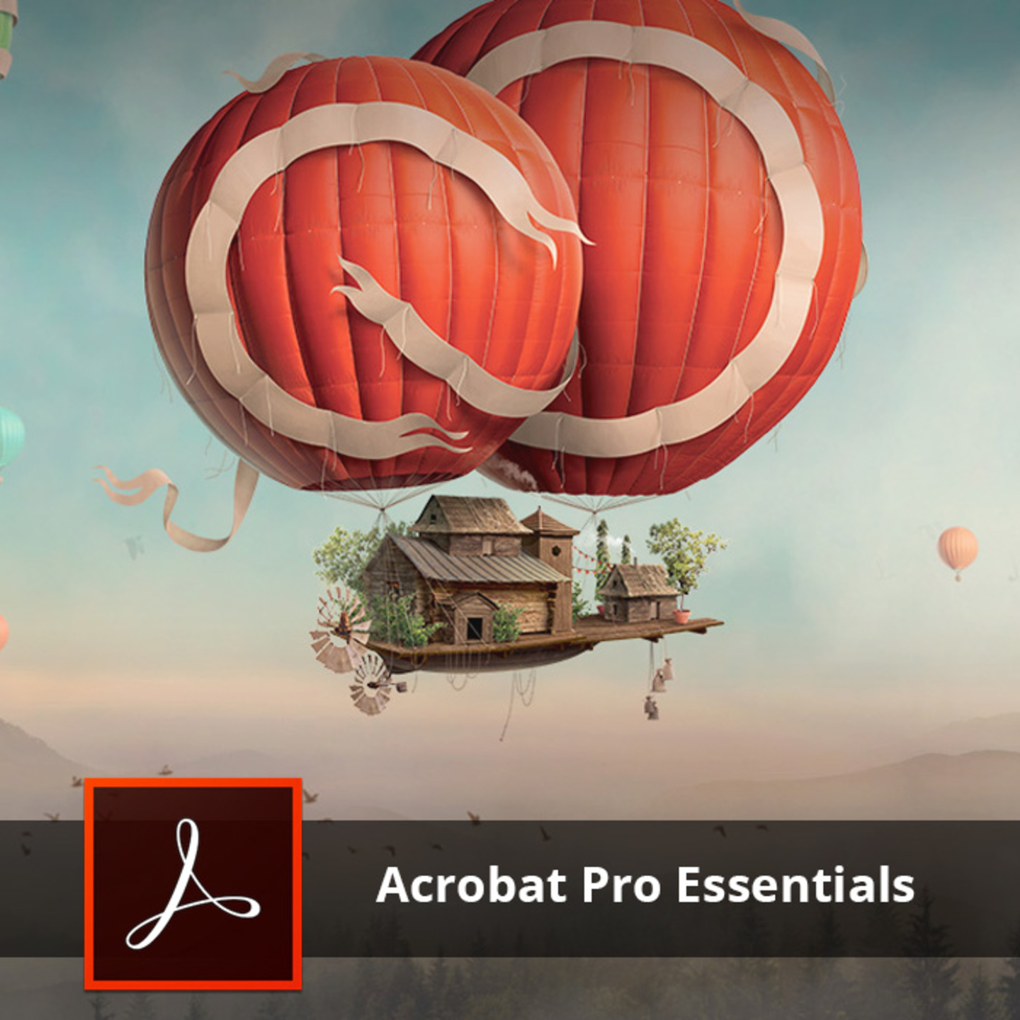 Adobe Training - Acrobat Professional Essentials