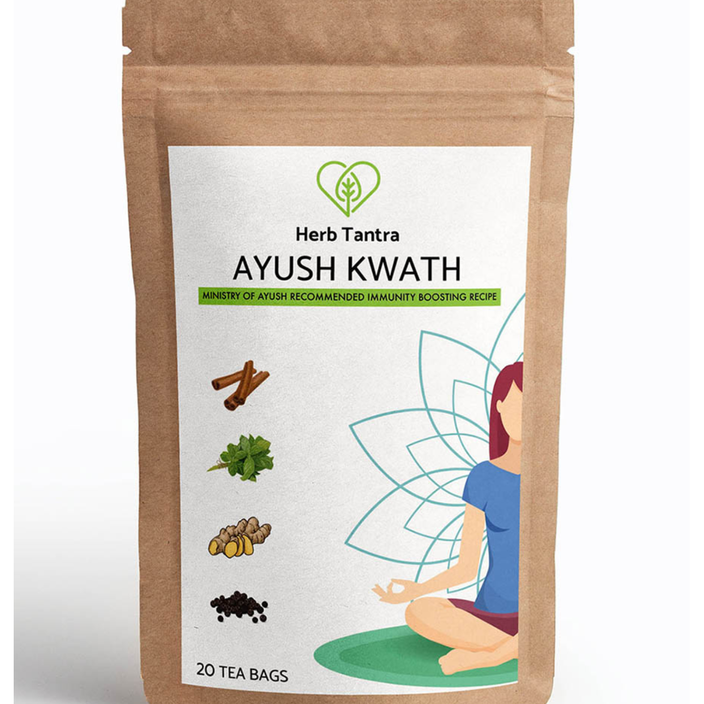 Herb Tantra Ayush Kwath Immunity Booster Tea (20 Tea Bags)