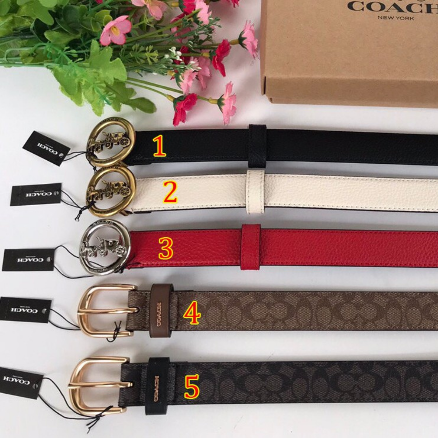 (SG COD) Ladies  Coach  belt F78181 accessories belt belt leisure belt