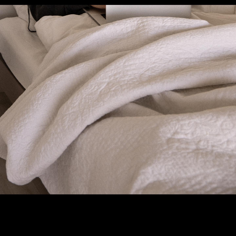 Queen-Size Bed Quilt Comforter Dry Clean